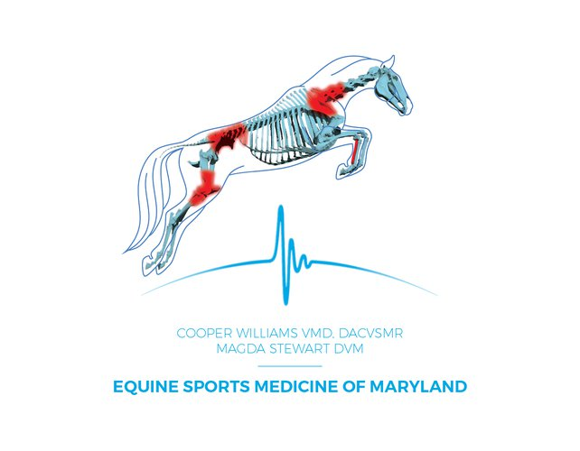 Equine Sports Medicine logo with type