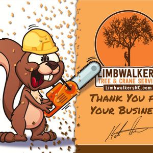 VanNoppen Designs Thank You Cards for Morganton Limbwalkers