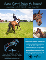 Equine Sports Medicine of Maryland Ad