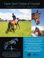 Equine Sports Medicine of Maryland Ad