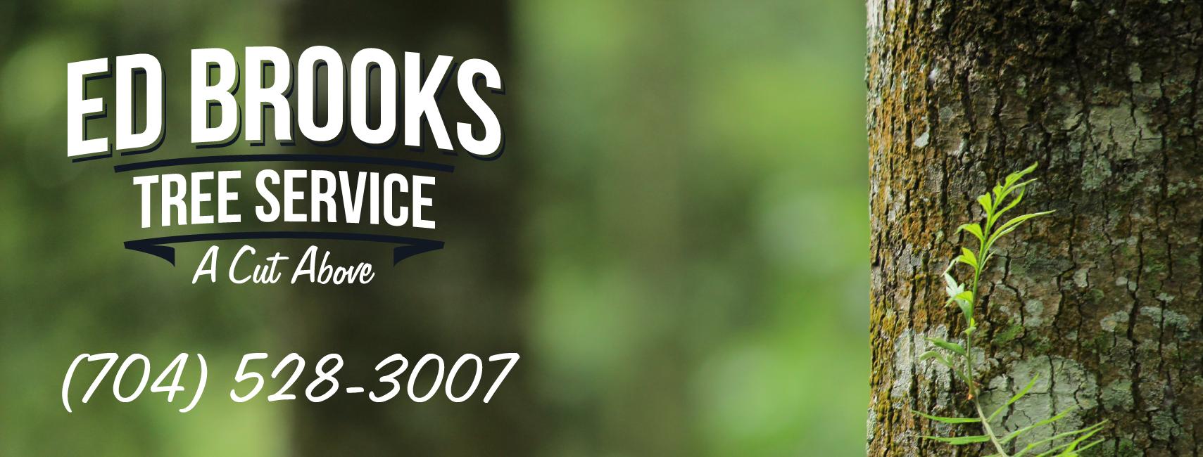 Rebranding for Ed Brooks Tree Service